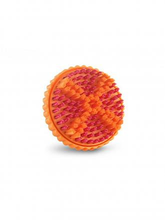 CLARISONIC | Smart Pedi Wet/Dry Brush Head Single | transparent