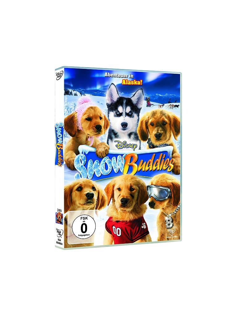 DVD | Snow Buddies - Abenteuer in Alaska | transparent