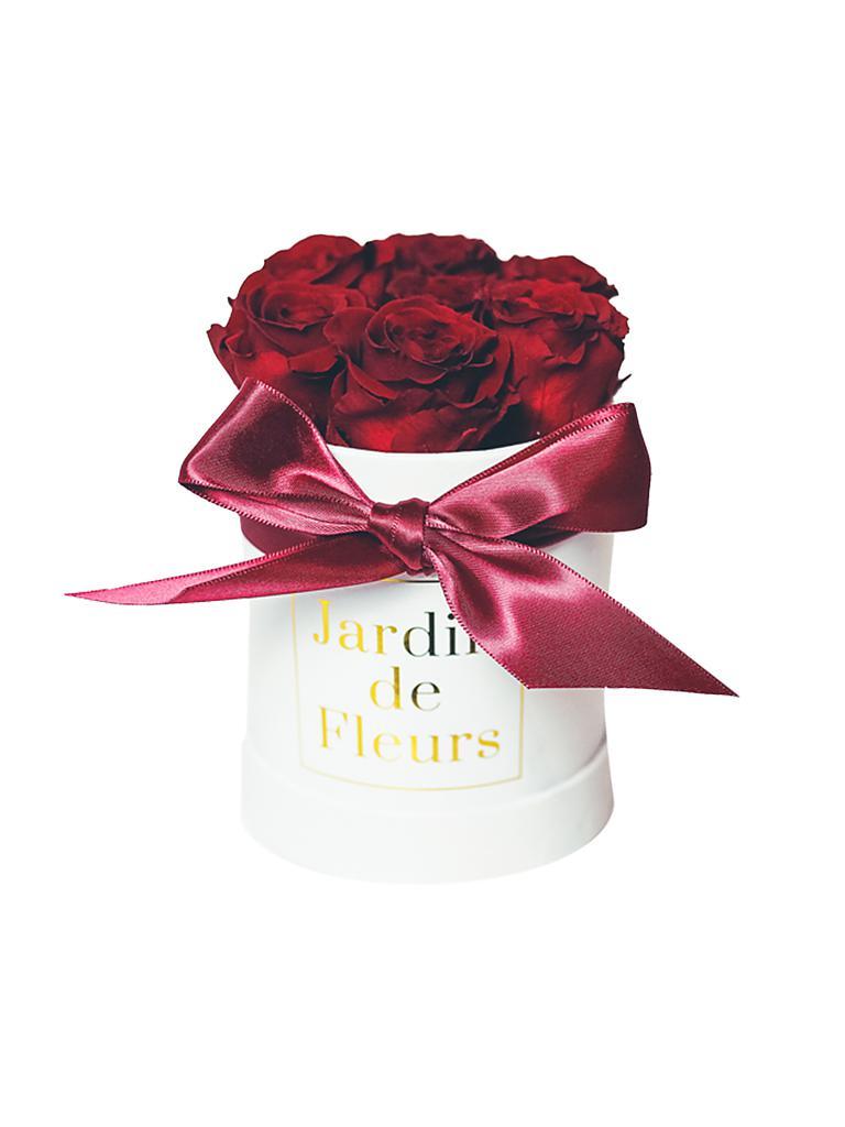 jardin de fleurs blumen box xs box rote rosen rot. Black Bedroom Furniture Sets. Home Design Ideas