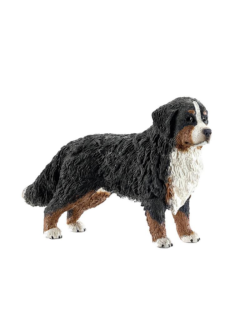 "SCHLEICH | Berner Sennenhund ""Farm World"" 16397 