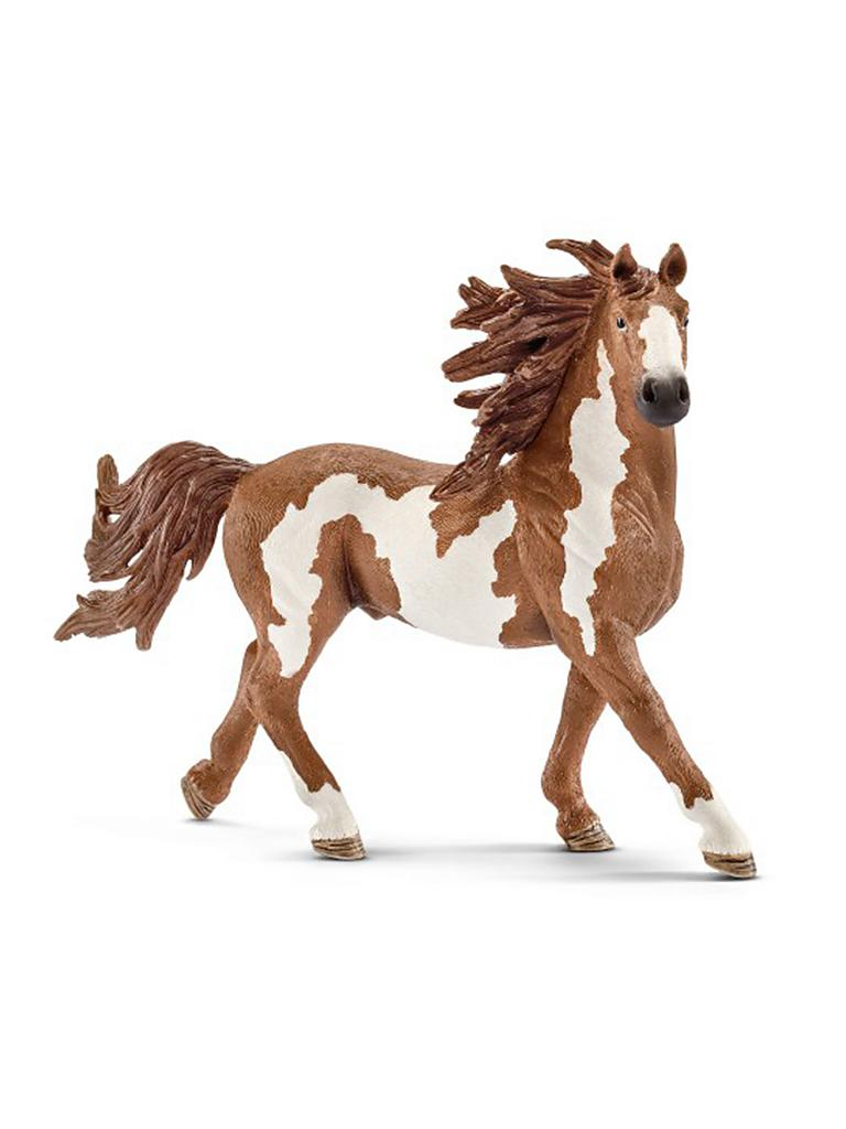 "SCHLEICH | Pinto Hengst ""Farm World"" 13794 
