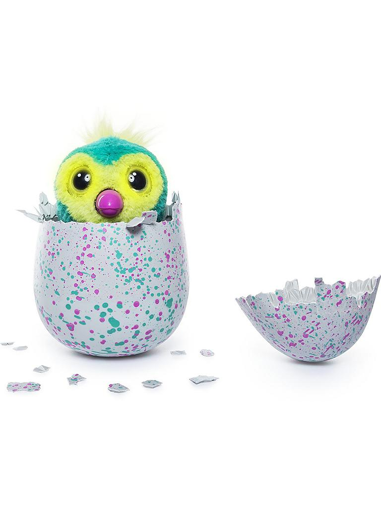 SPINMASTER | Hatchimals Draggles Pengualas Ei  (Grün/Pink) | transparent